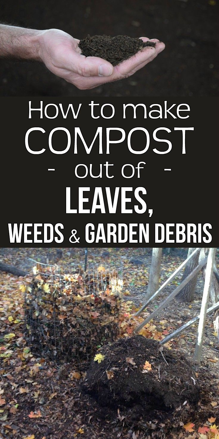 17 Best Images About Gardens Composting On Pinterest