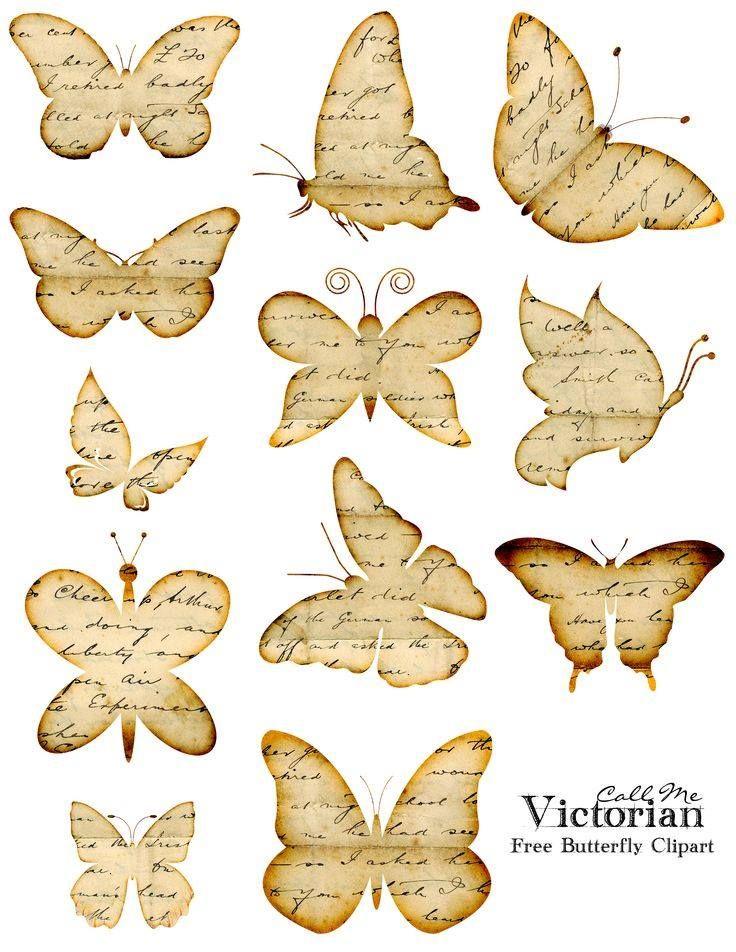 farfalle su giornale