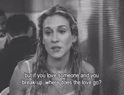 Billedresultat for satc quotes