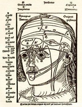 Diagrama del cerebro humano y los nervios asociados con los sentidos del oído, gusto, vista y olfato (Magnus Hundt Antropologium, 1501) #HistoriaMedicina Diagrama del cerebro humano y los nervios asociados con los sentidos del oído, gusto, vista y olfato (Magnus Hundt Antropologium, 1501)