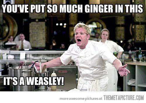 Harry Potter meme | lol love chef gordon ramsay (HAHAHAHAHA!)