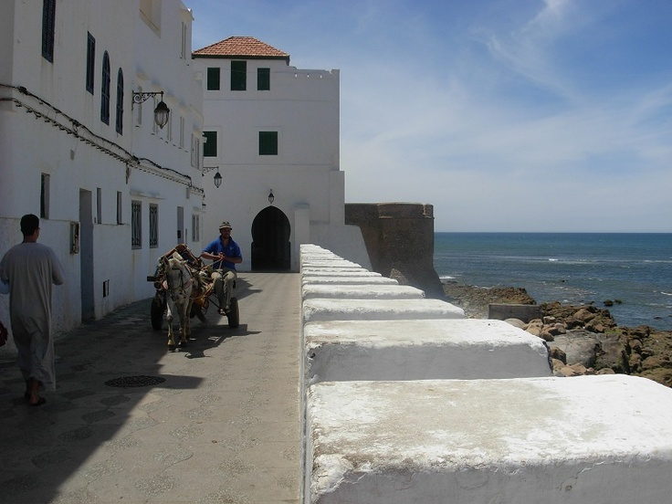 17 best images about asilah morocco on pinterest for Amsterdam tanger