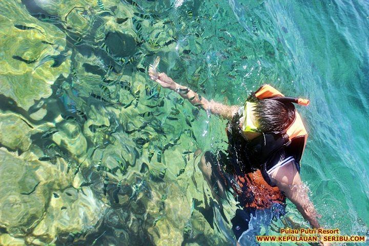 Pulau Putru Resort