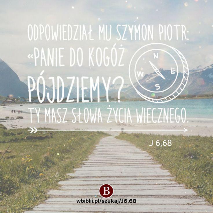 Odpowiedział Mu Szymon Piotr: «Panie, do kogóż pójdziemy? Ty masz słowa życia wiecznego. https://wbiblii.pl/szukaj/J6,68