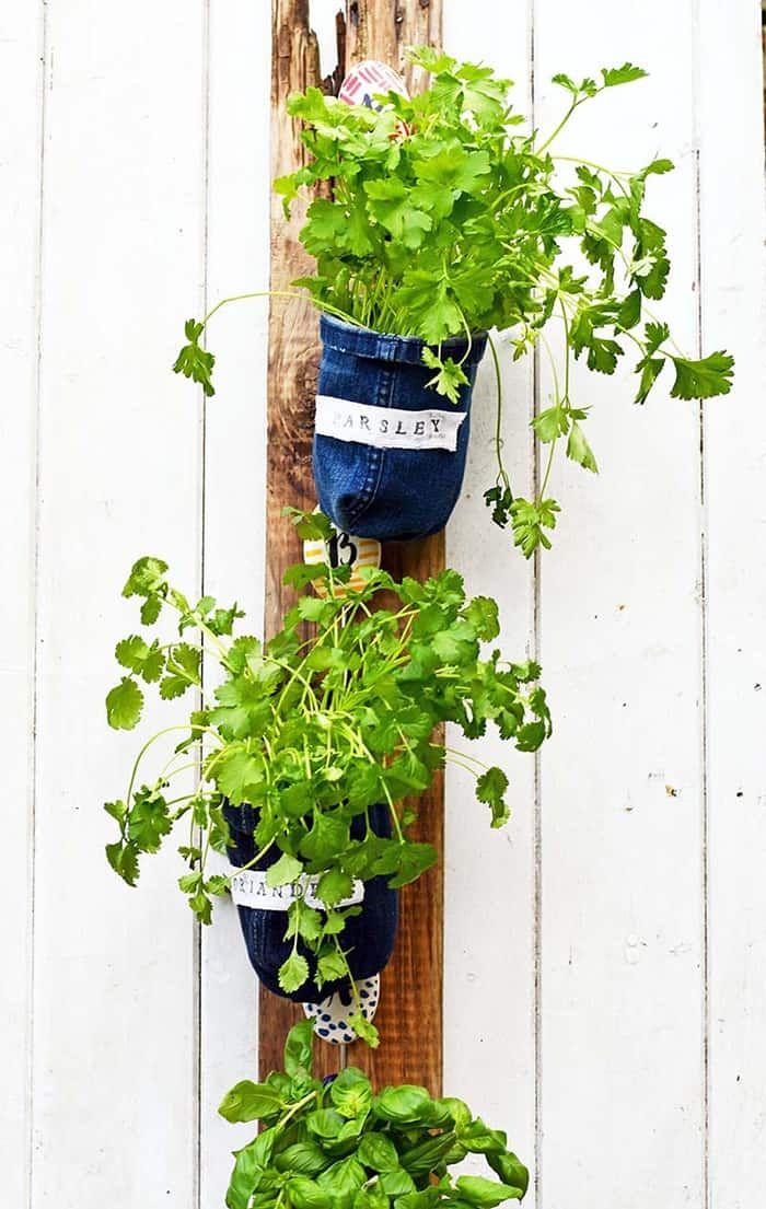 21 Diy Indoor Herbs Garden Ideas In 2020 Diy Herb Garden 400 x 300