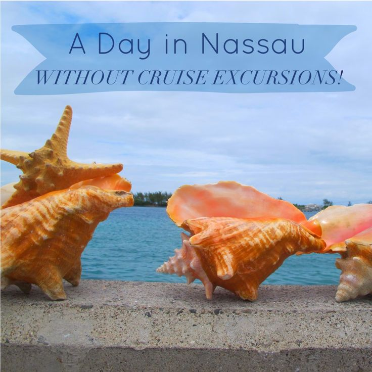 A Day in Nassau Without Cruise Excursions!                                                                                                                                                                                 More