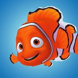 Sightseeing Tours Australia: Finding Nemo and Clown Fish of the Great Barrier R...