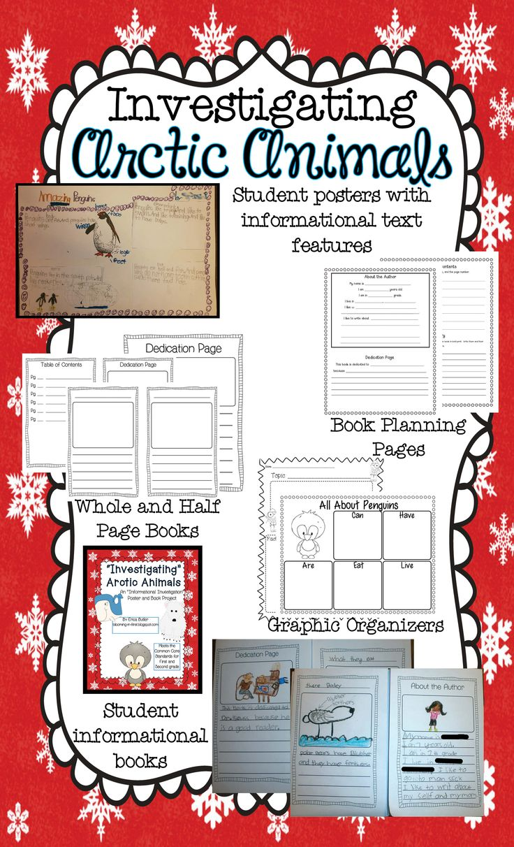 Investigating Arctic Animals Writing Unit.  Students can make a poster, informational book, or write a paragraph about a whale, penguin, or polar bear.  Included are the graphic organizers, book ideas, planning pages, and blank pages for creating your own book or paragraph about an arctic animal.  $