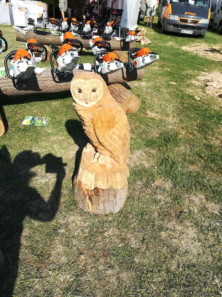 Chainsaw Carving Owl Chainsawcarvingby Gaborecz Istvan Pinterest