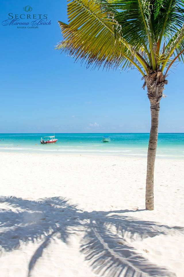 The water is so blue and the sand is so white! Secrets Maroma resort cancun #unlimitedromance