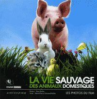 La vie sauvage des animaux domestiques/ Dominique Garing                                   http://hip.univ-orleans.fr/ipac20/ipac.jsp?session=X42W9L9871309.289&profile=scd&source=~!la_source&view=subscriptionsummary&uri=full=3100001~!519480~!0&ri=2&aspect=subtab48&menu=search&ipp=25&spp=20&staffonly=&term=la+vie+sauvage+des+animaux+domestiques&index=.GK&uindex=&aspect=subtab48&menu=search&ri=2