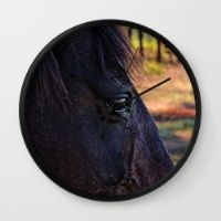Horse Wall Clock Great for the horse crazy or the animal lover.