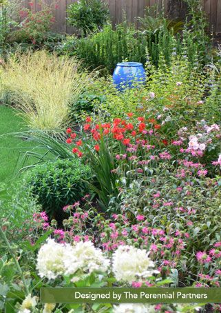 59 Best Images About Portland Gardens Plants On