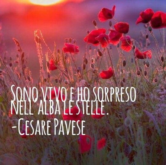 I am alive and I caught  in the dawn the stars.  Cesare Pavese   Italian poet  Mine translation