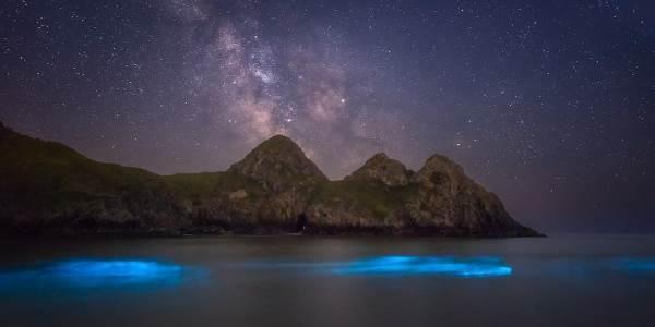 Bioluminescenza: il meraviglioso mare blu incorniciato dalla Via Lattea (FOTO)