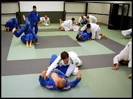 Brazilian jiu jitsu belts - The five different levels of belts in Brazilian jiu jitsu are – white belt, blue belt, purple belt, brown belt, and black belt. You can achieve the masters level proficiency in 8 to 12 years.http://www.primebjj.com