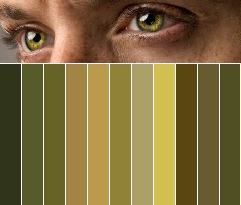 And now, using this Jensen Ackles eye color palette: I can decorate every single thing in my life ever. #SupernaturalCast