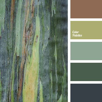 Color Palette #3249 | Color Palette Ideas | Bloglovin'