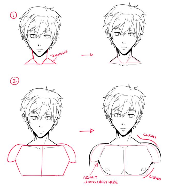 For male characters, the important part is the upper body, so let's continue on to my favorite(?) section of this lect~  1 - Well now that you have your head, draw the sloping-down shoulders. The red blocks/shapes here vaguely represent the muscle structure underneath.  2 - Guy's chest line is usually higher than a female's. Remember that the nipples are NOT in the MIDDLE of the breast..that is just weird.   3 - Here it might look difficult, but the more you practice drawing it, you'll find…