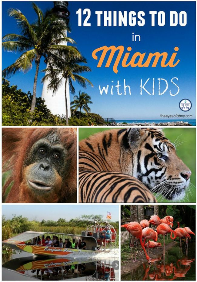 Family Travel: things to do in Miami with kids - South Florida