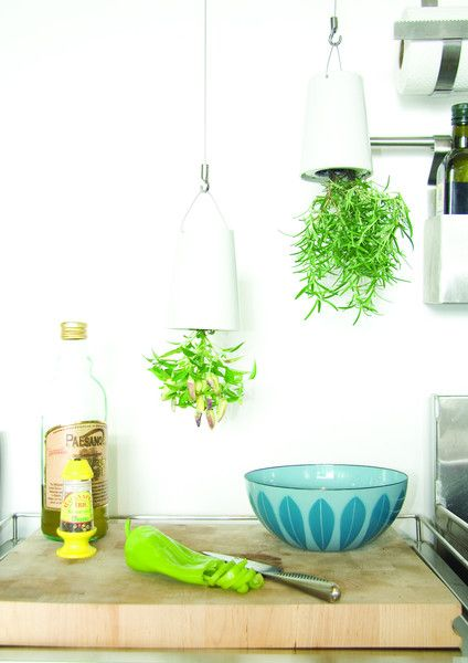 Der Sky Planter von #Boskke ist ein über Kopf hängender Blumentopf. Grün ist nicht nur die Weide! #UpsideDown