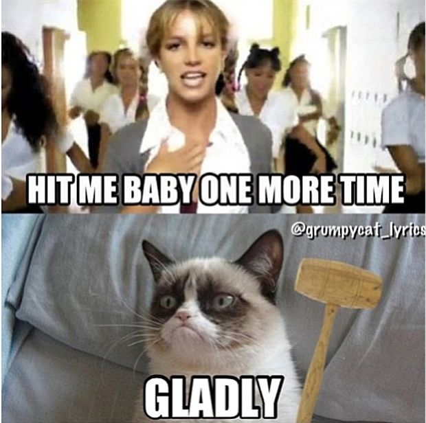 Grump has the right idea..... Grumpy Cat #GrumpyCat #Humor #Meme