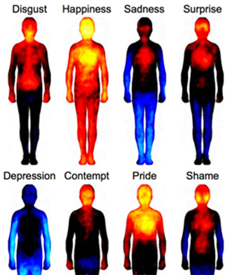 We all know that emotions don't live only in our heads. The hair on our arms tends to stand on end when we feel fear, and our stomachs flutter when we're excited or nervous. But, now, a team of Finnish researchers has mapped a whole range of