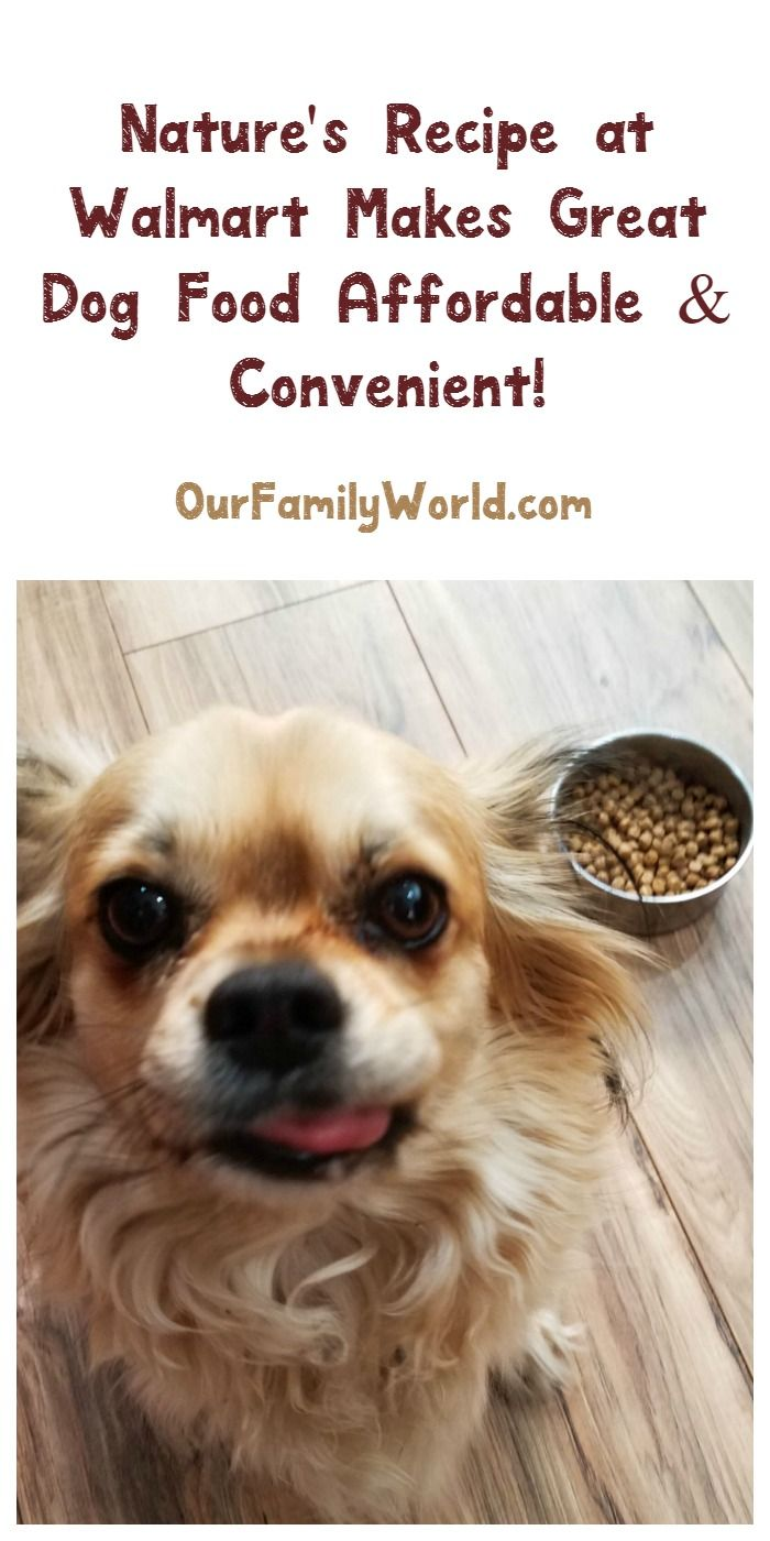 Feeding your pup high-quality AND affordable dog food just got easier thanks to Nature's Recipe at Walmart! Check it out! #ad