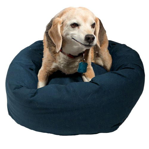 he Bumper Bed provides comfort, cushion and luxury your dog deserves! Each bed is filled with thick denier 100% recycled IntelliLoft polyfill, making your furry friend feel like the king/queen of their world. Easy to clean with zip cover that can be thrown into the washer/dryer.