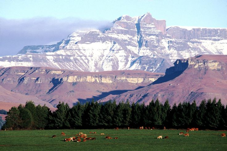 Giant's Castle from the Kamberg by Stephen Pryke. #Drakensberg #Photography http://www.n3gateway.com/photographers.htm