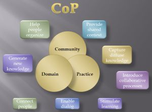 CoP_diagram_grey
