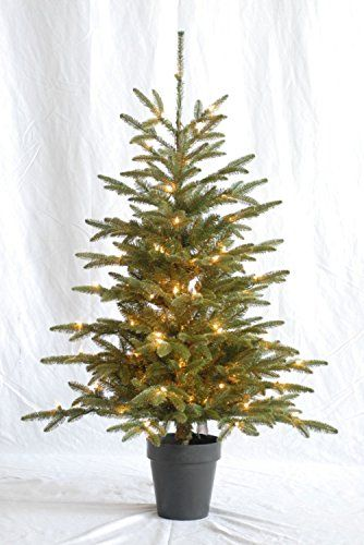 Pre-lit 48 Inch High By 33 Inch Diameter Potted Noble Fir... https://smile.amazon.com/dp/B010C7JGDW/ref=cm_sw_r_pi_dp_x_r4Jlyb8S72WV8