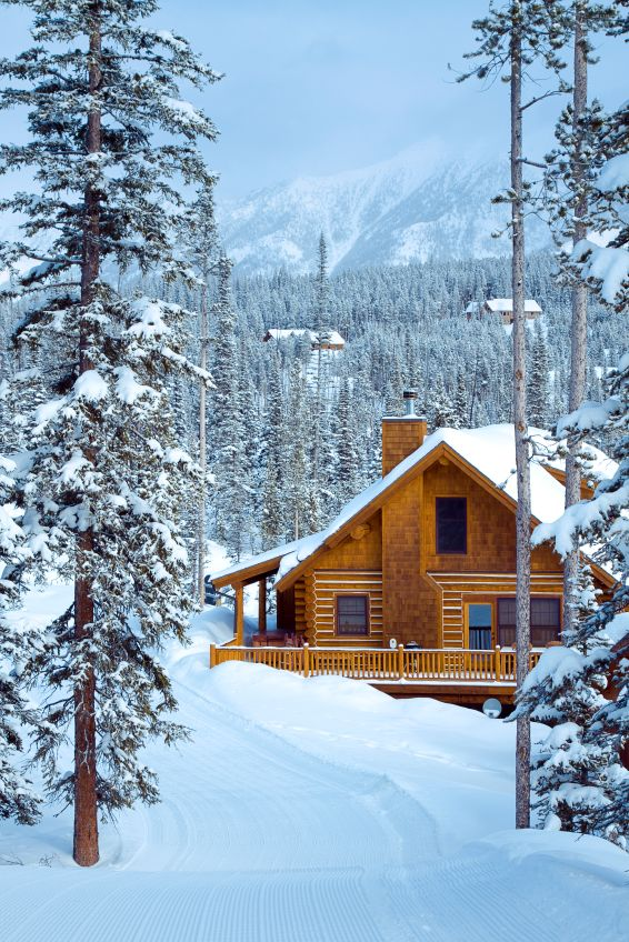 spend a winter snuggled up in a cabin in Montana where all I do is ski, read, eat and sleep