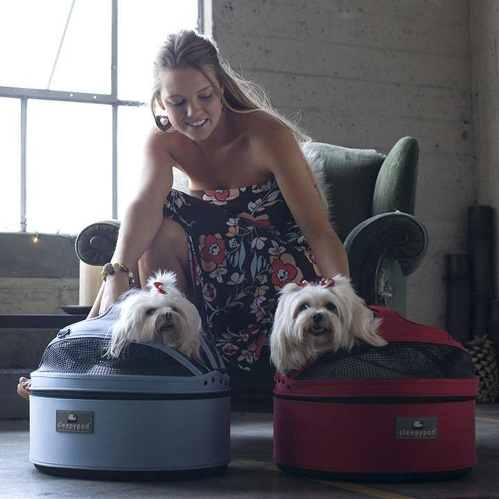 Sleepypod Standard Mobile Pet Bed Carrier Pet Bed Pets