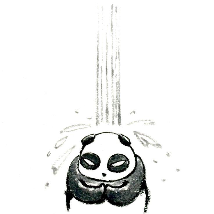 【一日一大熊猫】 2015.5.14 暑くなってくると水浴びしたくなるよなぁ。 #パンダ http://osaru-panda.jimdo.com