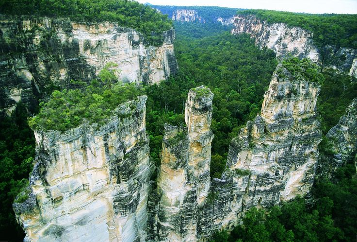 Carnarvon Gorge [30km long & 600m deep, in the Carnarvon National Park, Queensland