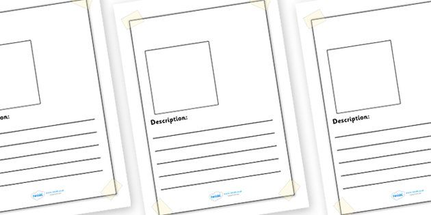 Editable Missing Lost Pet Writing Frames - editable writing frames, lost pet, missing pet, page borders, writing templates, writing aids, fill in, pets, help poster, lined pages, animals, cat, dog, hamster, mouse, parrot, guinea pig, lizard, rabbit,