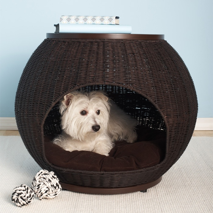 End table pet bed what a great idea pinterest for Dog bed table