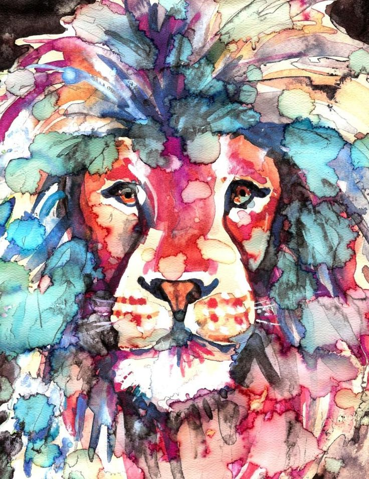 African Lion Watercolor Painting Print by CanyonWrensNest on Etsy