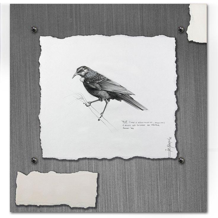 TUI - The Intelligent Observer - Ian Anderson Fine Art http://ianandersonfineart.com/blog/