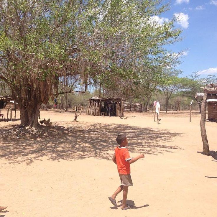 En las las comunidades Wayuu de La Guajira, literalmente no hay nada. Ni agua, ni luz, ni colegios, ni médicos NADA.. #NiUnoMas
