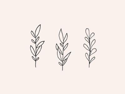 Plants                                                                                                                                                     More