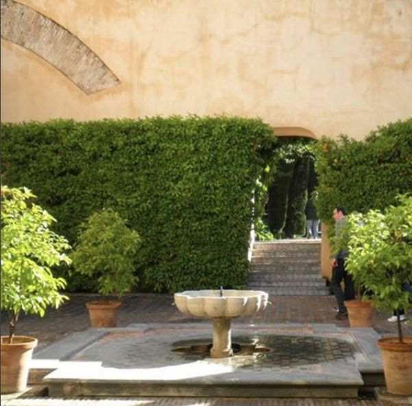 They really nail it in #Spain #gardendesign #waterfeature #pond #tiles #citrus #planters #gardenroom #hedge #melbourne #gardenmaintenance