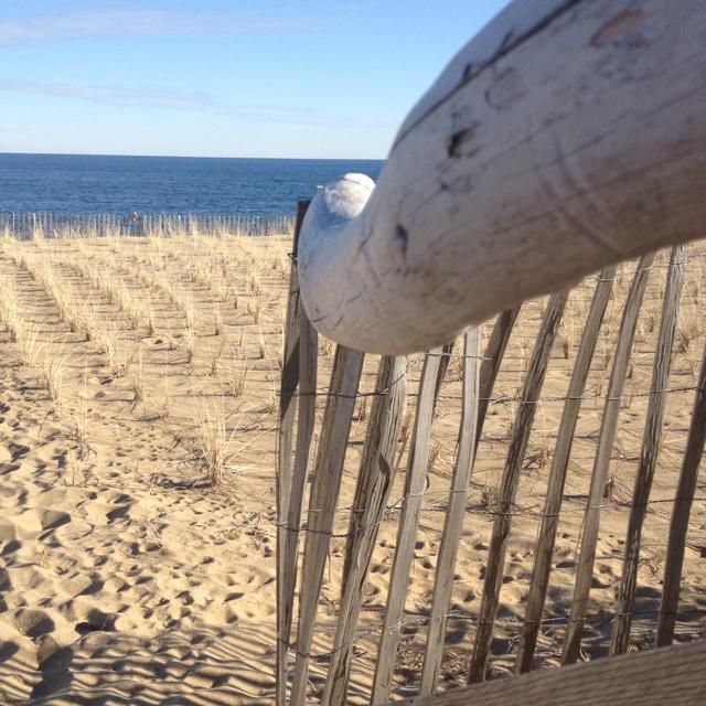Plum Island Beach: Plum Island In The Wintertime. Peaceful.
