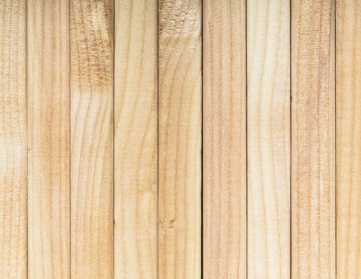 What Is Standing Timber Prices For Loggers?