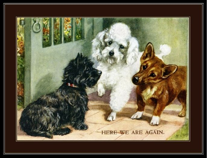 English Print Cairn Terrier Poodle Corgi Dog Dogs Puppy Puppies Poster Art