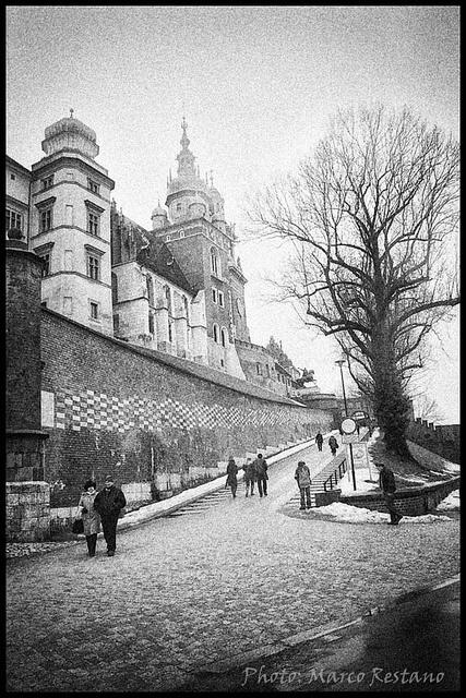 Wawel Castle - Kraków