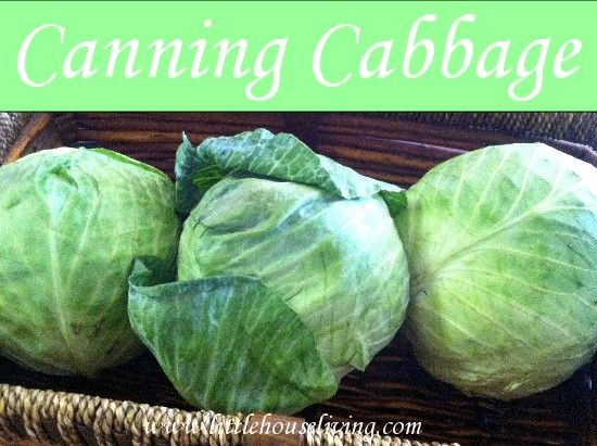 Canning Cabbage and Simple Homemade Sauerkraut