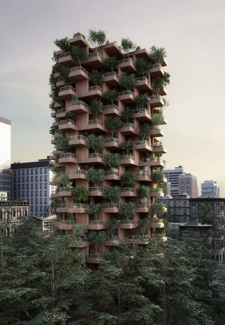 forest bulding, modern and intelligent, excellent for sustenaibles projects | Pinterest: Vimearch