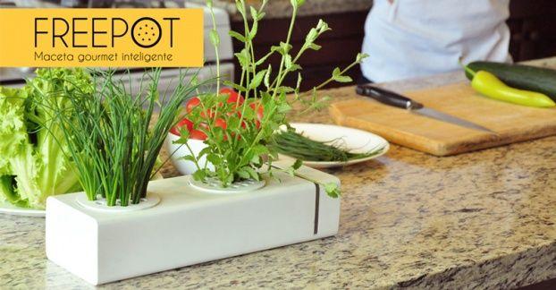 Agrofree: el macetero inteligente que cultiva tus plantas por ti